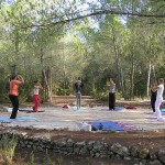Daily yoga in the pine forest